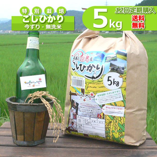 【定期購入】5kgx12回 令和元年産 玄米 白米 今ずり米 無洗米 減農薬・特別栽培米 コシヒカリ