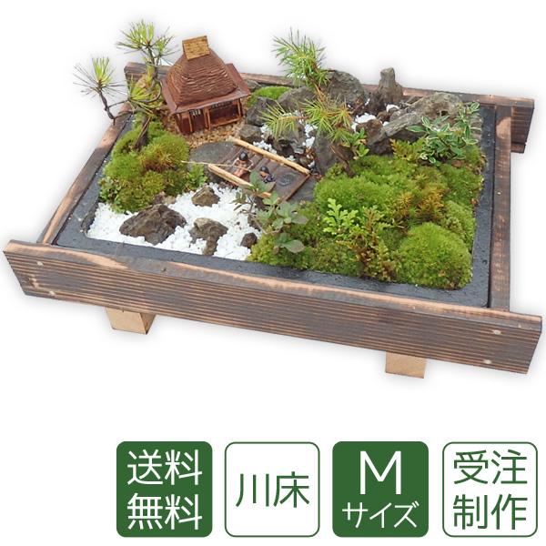 【母の日】盆栽 盆景 ミニ庭園 川床M 【送料無料】