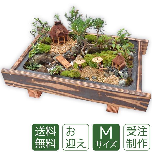 【母の日】盆栽 盆景 ミニ庭園 お迎えM 【送料無料】