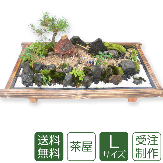 【残暑お見舞い】盆栽 盆景 ミニ庭園 茶屋L 【送料無料】