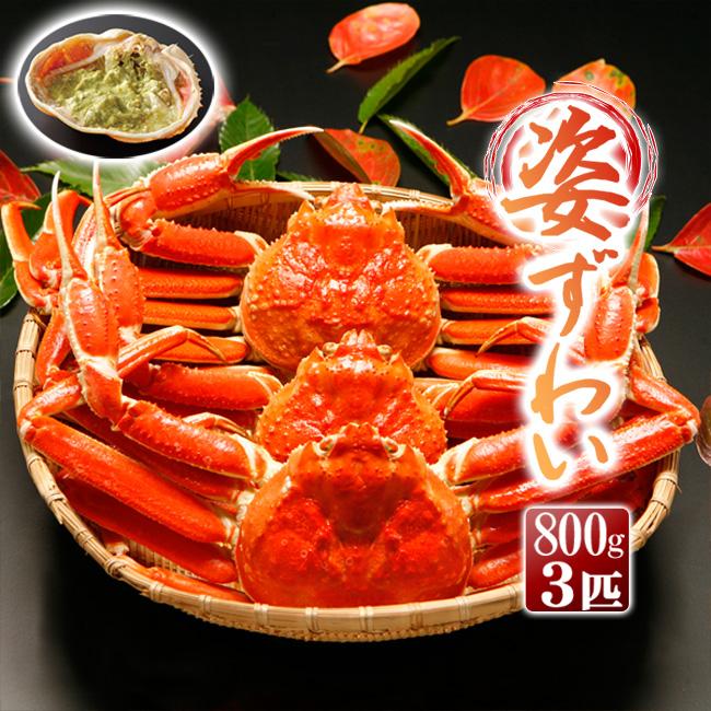 カニ ズワイガニ ずわい蟹 姿 ボイル 800g×3匹(2.4kg)カニみそ 甲羅酒【送料無料】