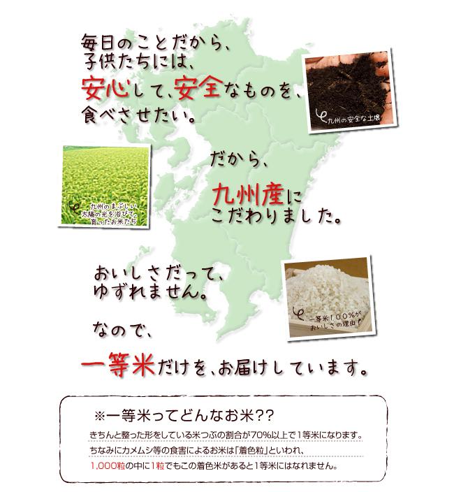 New 25 production Kumamoto kinuhikari multi-pronged 5 kg our popular NO.2! Hikari kinu Kumamoto rice rice rice Koshihikari rice