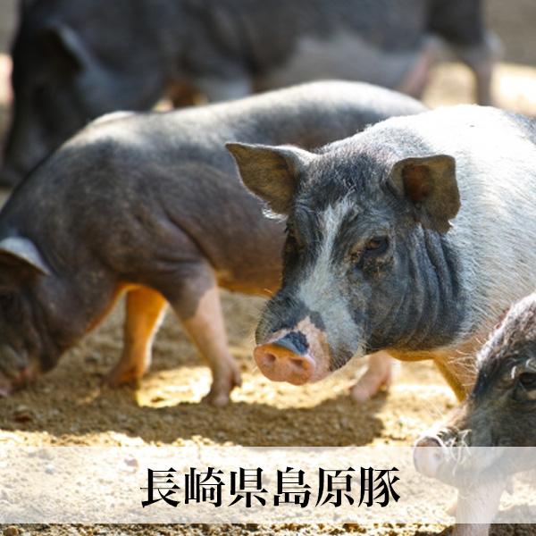 長崎島原豚 ももしゃぶしゃぶ用 250g