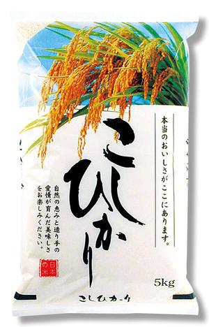 【既製米袋】稲穂 こしひかり10kg用×500枚