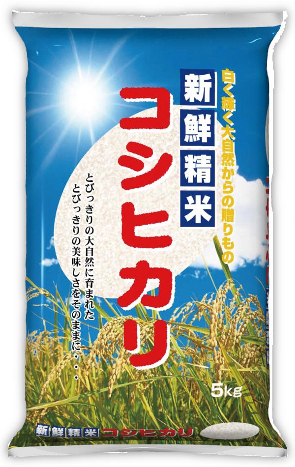【既製米袋】輝 青空 コシヒカリ10kg用×500枚
