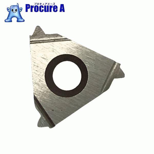 三和 外径三角ネジ切チップ P2.0 09P20 10個▼411-0871 (株)三和製作所
