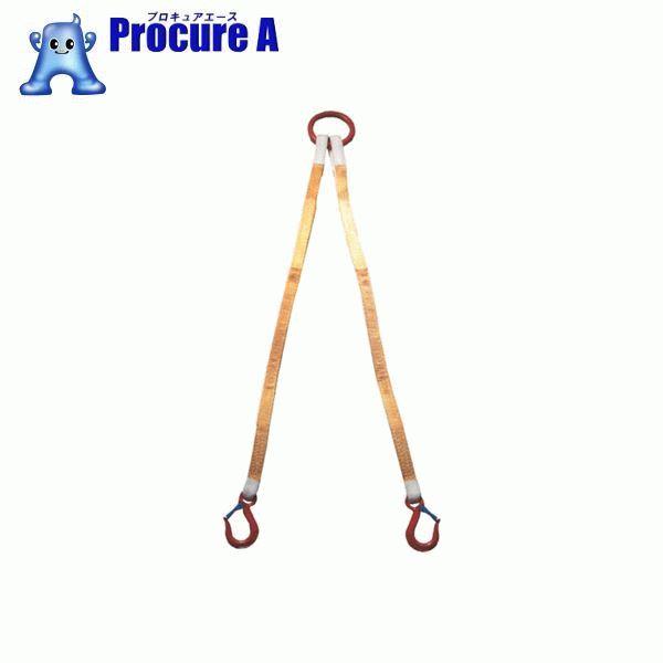 大洋 2本吊 インカリフティングスリング 2t用×1.5m 2ILS 2TX1.5 ▼473-0151 大洋製器工業(株)