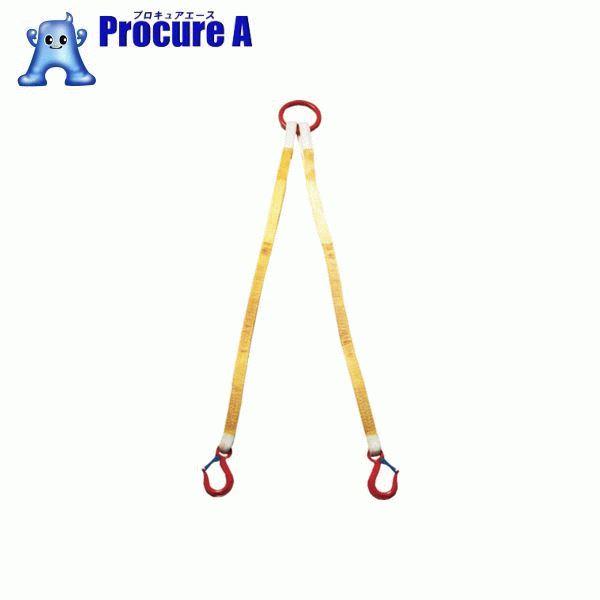 大洋 2本吊 インカリフティングスリング 5t用×2m 2ILS 5TX2 ▼473-0216 大洋製器工業(株)