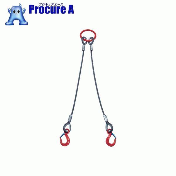 大洋 2本吊 ワイヤスリング 2t用×2m 2WRS 2TX2 ▼473-0275 大洋製器工業(株)