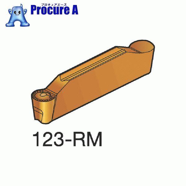 サンドビック コロカット2 突切り・溝入れチップ H13A 超硬 N123G2-0400-RM H13A 10個▼607-4791 サンドビック(株)コロマントカンパニー