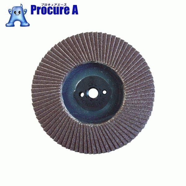 AC テクノディスクA・REVO 100XM10 #80 TDRV100M10A-80 10枚▼380-8220 (株)イチグチ