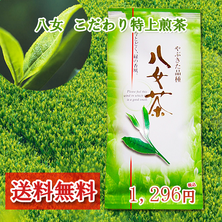 祝日 やぶきた品種の特上の八女茶です まろやかで甘味があります 2021年新茶 八女茶 送料無料 即出荷 こだわり特上煎茶 100g 国産 深蒸し茶 緑茶 八女 特上 福岡 煎茶