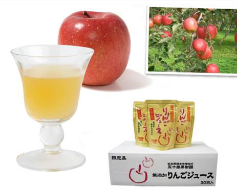 五十嵐果樹園のりんごジュース 1箱 数量限定アウトレット最安価格 再再販 185g×20袋入り