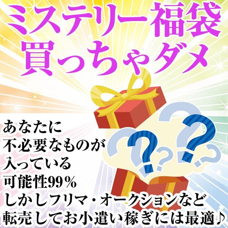 ミステリー福袋 2020年 50万円コース 送料無料「39ショップ」