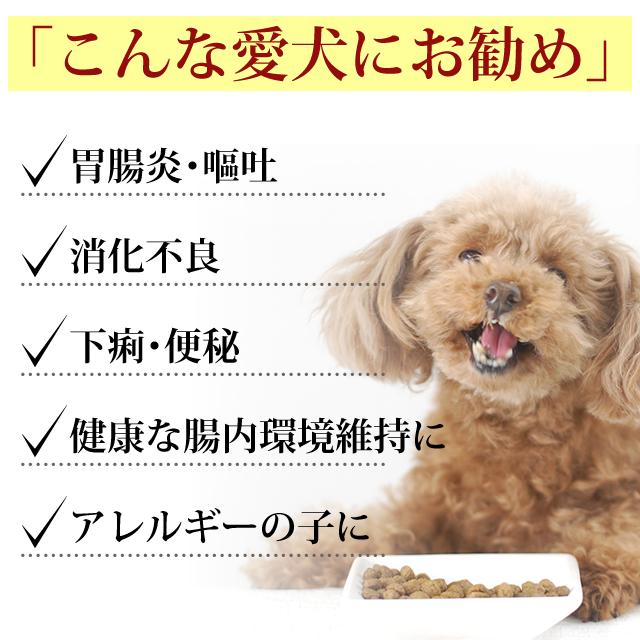 개 FORZA10 | 인 테 스 티 날 (위장 관리) 2kg (フォルツァディエチ) 치료 식 소화 개밥 フォルツァ 10 드라이 フォルザ