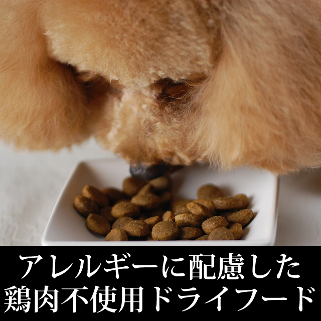 Bait dog article dry food grain-free rice dock food pet article ワンコ of the  tripe dry dog food GL ベニソン 907 g cereals nonuse cereals-free