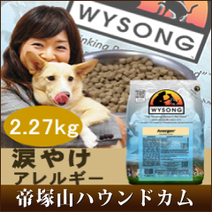 Early booking sale October-tears burn dog / Wilson アナジェン 2.27 kg/WYSONG / additive-free low calorie with dog and allergies and obesity diet and wysong / dog enzymes lactic acid bacteria with 5P13oct13_b