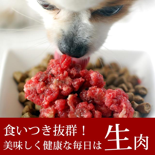 馬肉寵物 / 原料肉小託盤 1 公斤 arabiki 粗糙的狗馬、 狗玩具貴賓犬小狗體型中等的狗自製食品配料 / 過敏飲食 / 原料肉飲食