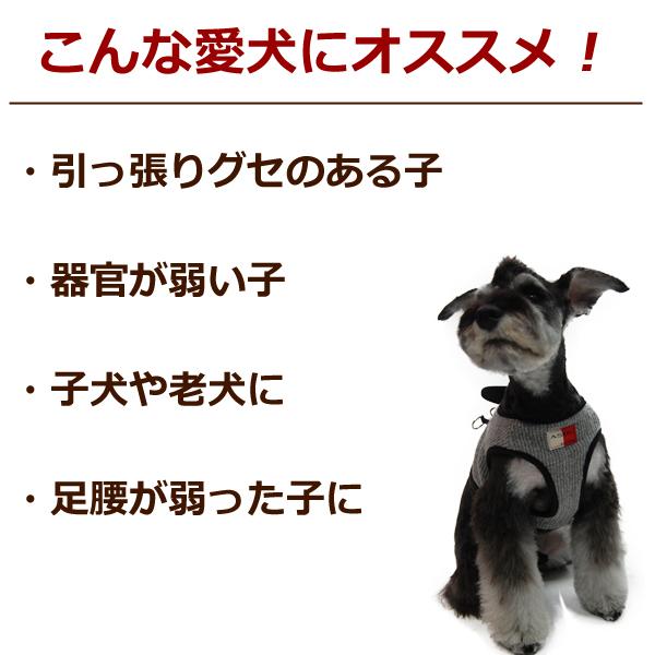 Tezukayamahoundcom Rakutenichibaten Cute Dog Harness Medium Dog