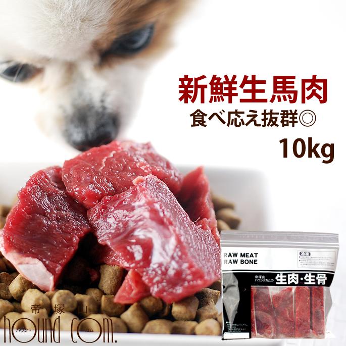 犬 馬肉 生馬肉 酵素 プロバイオティクス オメガ3補給 ペット 生肉 生食ローフードとして 中型犬 コーギー お徳用 シニア 10kg (人気激安) 柴犬 ブロック ドッグフード 大型犬 手作り食 トラスト a0015 犬用馬肉 高齢犬