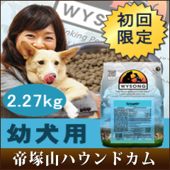 Ship 10/28-dog trial first limited within WYSONG growth 2.27 kg / puppy / young dog / for baby non-additive dogfood / tears heartburn allergic to 5P13oct13_b