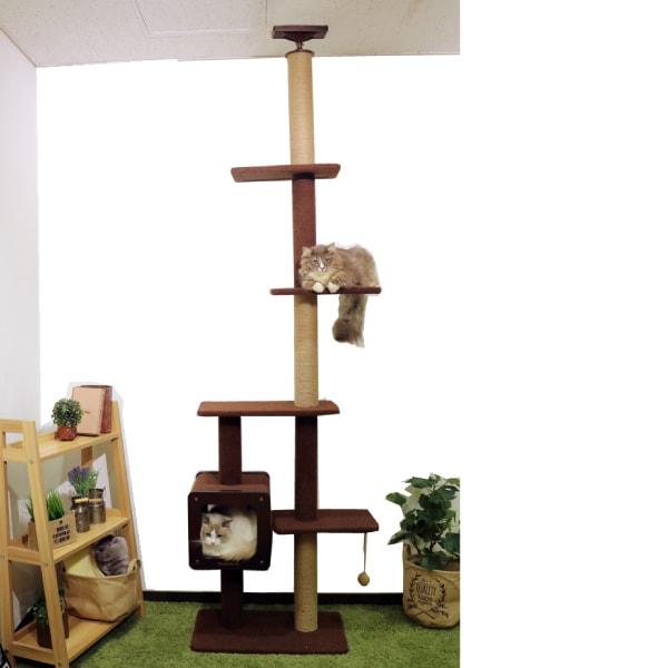 モダンルームスクラッチ タワーシングル おしゃれな突っ張り棒型キャットタワー 猫用