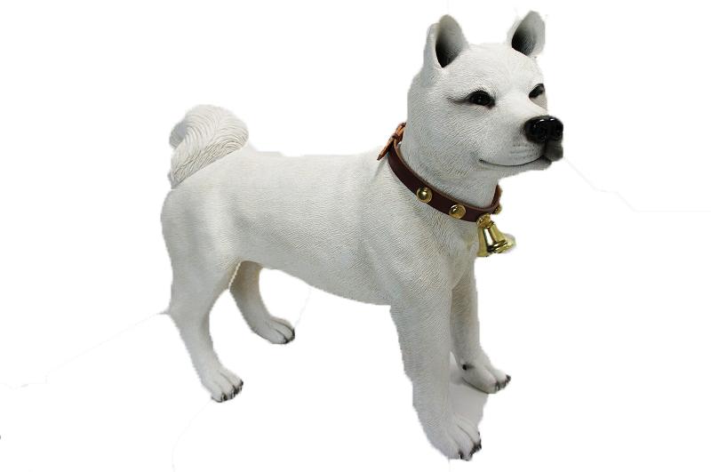 秋田犬 あきた犬 立ち ビックサイズ53cm 白色