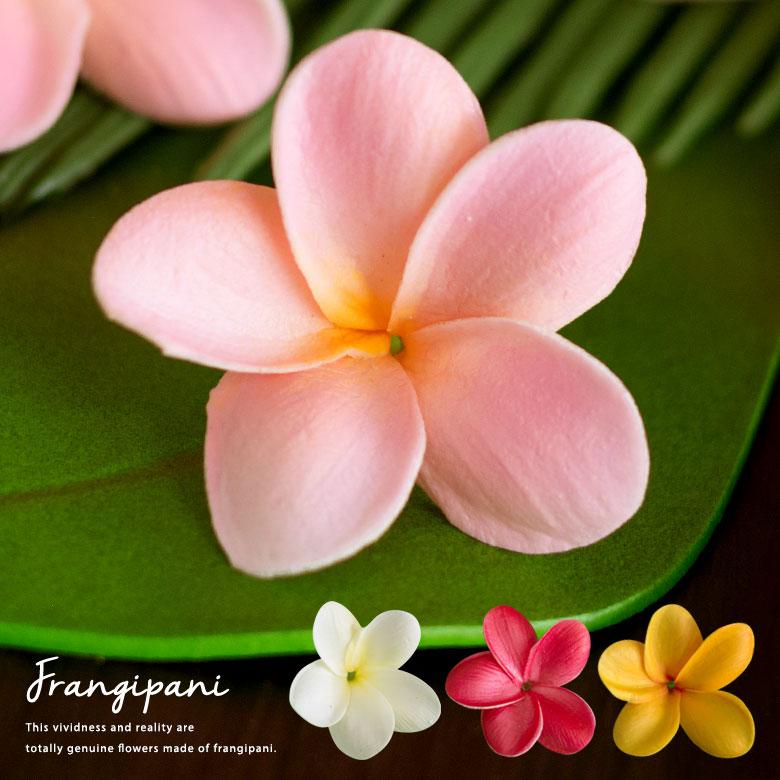 本物そっくりなアーティフィシャルフラワー ハワイではプルメリア バリ島ではフランジパニと呼ばれる造花は置くだけで南国リゾート感たっぷりなデコレーションオブジェです 超リアルなプルメリアの造花 フランジパニ 4色展開 61610-61611-61612-61613 ※メール便不可※ 造花 送料無料カード決済可能 リアル ハワイアン雑貨 置物 アジアン雑貨 バリ雑貨 パーツ フェイク 花かざり 全品最安値に挑戦 ハワイ ナチュラル 置き物