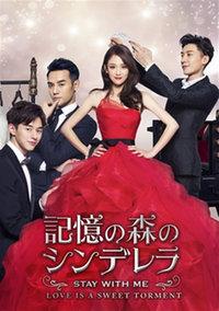 中国ドラマ/ 記憶の森のシンデレラ~STAY WITH ME~ -第1~12話- (DVD-BOX 1) 日本盤 放棄我 抓緊我