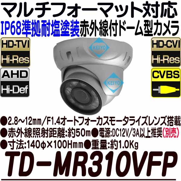 TD-MR310VFP【耐塩塗装屋外防雨型赤外線搭載200万画素フルハイビジョンドーム型カメラ】 【防犯カメラ】【監視カメラ】【送料無料】