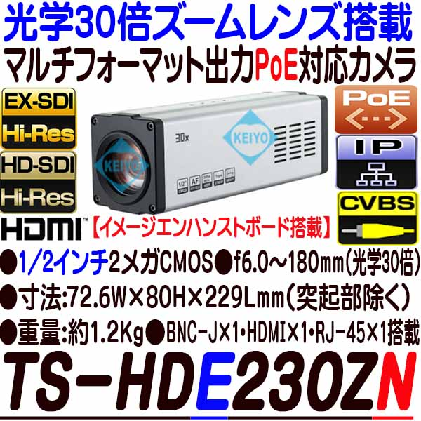 TS-HDE230ZN【光学30倍ズームレンズ搭載1/2インチ低照度HD-SDI/EX-SDI・IP方式対応イメージエンハンストカメラ】 【防犯カメラ】 【監視カメラ】 【3D Corporation】 【スリーディ】 【送料無料】