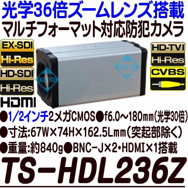TS-HDL236Z【光学36倍ズームレンズ搭載1/2インチ低照度HD-SDI/EX-SDI方式対応カメラ】 【防犯カメラ】 【監視カメラ】 【3D Corporation】 【スリーディ】 【送料無料】