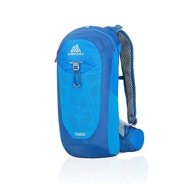 グレゴリー メンズ バックパック・リュックサック バッグ Gregory Men's Miwok 12L Pack Reflex Blue