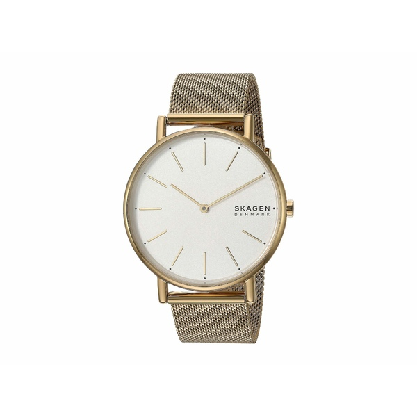 スカーゲン レディース 腕時計 アクセサリー Signatur Two-Hand Women's Watch SKW2795 Gold Stainless Steel Mesh