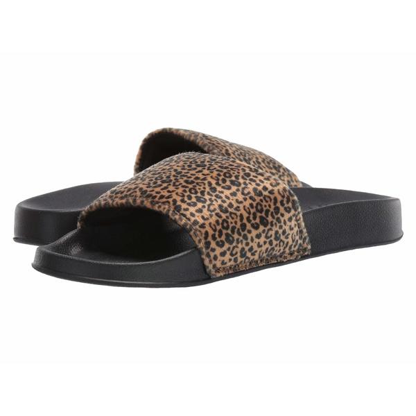 ディーシー レディース サンダル シューズ Slide TX SE Cheetah Print