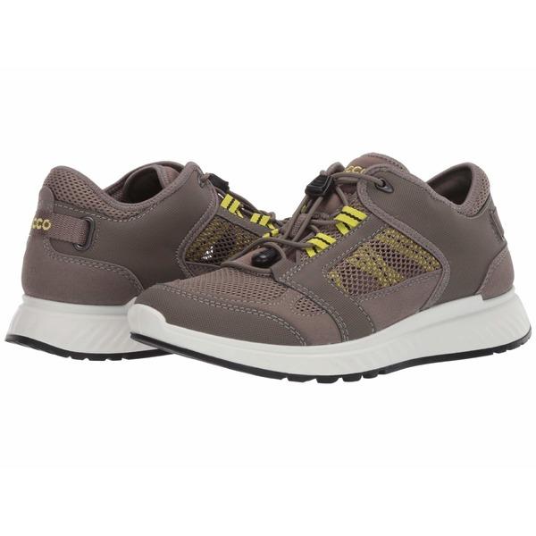 エコー メンズ スニーカー シューズ Exostride Summer Trail Sneaker Warm Grey/Sulphur