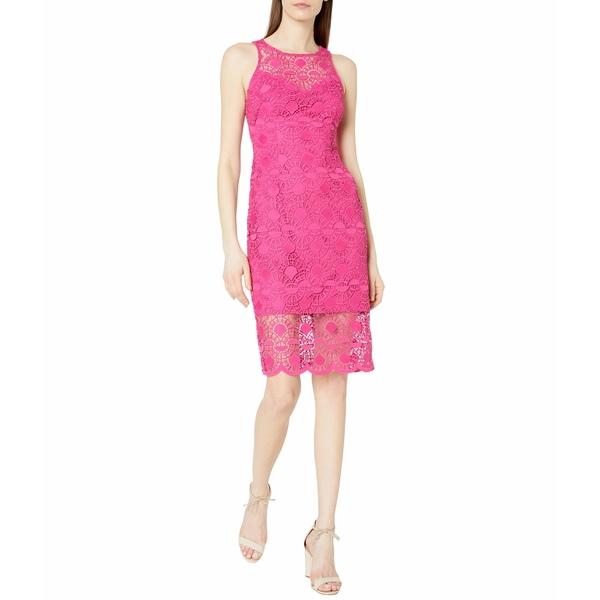 アドリアナ パペル レディース ワンピース トップス Sunrise Lace Illusion Sheath Dress Bright Azalea