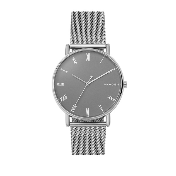 スカーゲン レディース 腕時計 アクセサリー Signatur Stainless Steel and Leather Strap Watch Silver