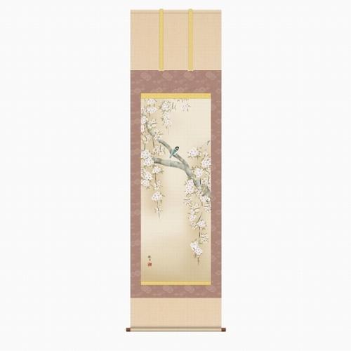 【掛け軸・掛軸】森山観月『桜花に小鳥(尺五立)』版画+手彩色■表装済み・新品★
