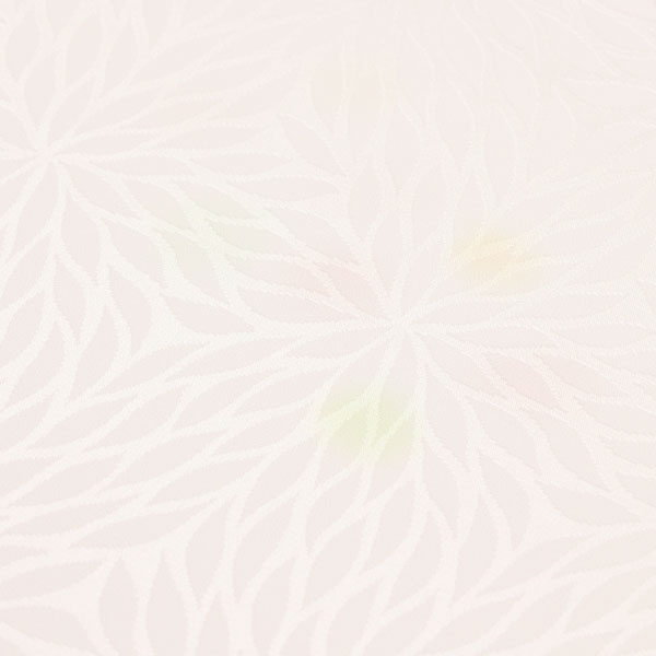 【袖無双胴抜きのお仕立て付き】丹後ちりめん 日本の絹 菊紋織地 ぼかし 長襦袢 フォーマル用に nj1998【smtb-k】【w1】【後払い決済不可】