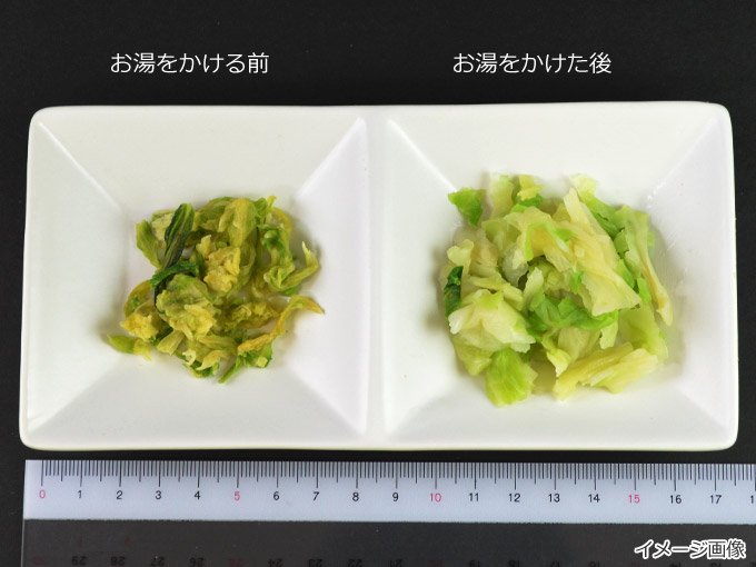 フリーズドライ乾燥野菜・果物(L)>キャベツ・ほうれん草・白菜・パクチー>乾燥キャベツ