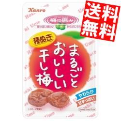 【送料無料】カンロ19gまるごとおいしい干し梅6袋入※北海道800円・東北400円の別途送料加算