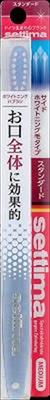 【送料無料】【サンスター】【セッチマ】セッチマハブラシ スタンダード【1ホン】×60点セット まとめ買い特価!ケース販売 ( 4901616215214 )