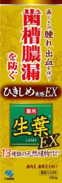 【送料込】小林製薬 生葉EX 100g×48点セット 医薬部外品 ( 歯周病歯磨き ハミガキ ) ( 4987072038826 )
