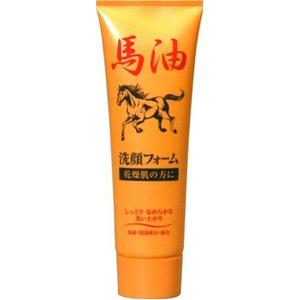 【送料無料】ジュン・コスメティック馬油洗顔フォームN 120G×48点セット まとめ買い特価!ケース販売 ( 4964653102206 )