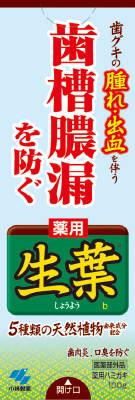 【送料無料】小林製薬 生葉 ( しょうよう ) b 100g  ( 歯周病・知覚過敏用歯磨き粉・ハミガキ ) ×48点セット まとめ買い特価!ケース販売 ( 4987072008041 )