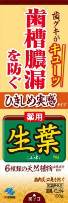 【送料無料】小林製薬 ひきしめ生葉 100g×48点セット まとめ買い特価!ケース販売 ( 4987072072752 )