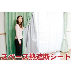 【当店は4980円以上で送料無料】スペース熱遮断シート 100×173cm 2個セット