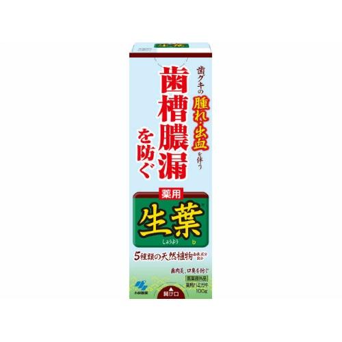 小林製薬 薬用ハミガキ 生葉 100g ×48個セット 【歯槽膿漏予防】