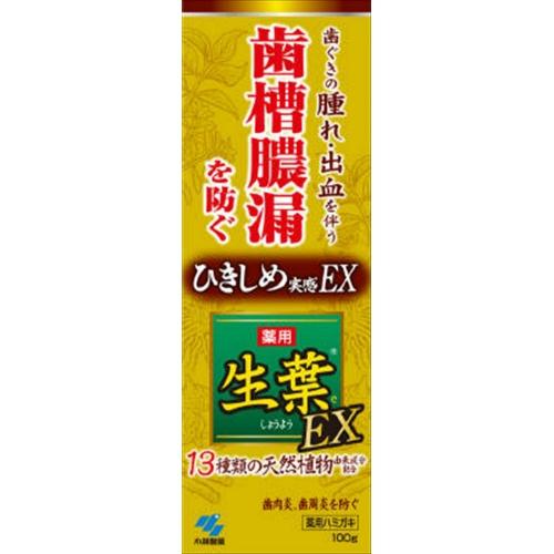 小林製薬 生葉EX 100g ×48個セット 【歯槽膿漏予防】